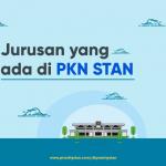 Jurusan yang ada di PKN STAN